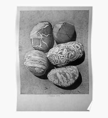 Five Pebbles Poster