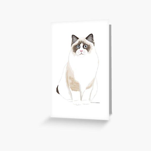 Seal Bicolor Ragdoll Greeting Card
