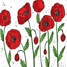 Poppies of Remembrance by AverysGarden