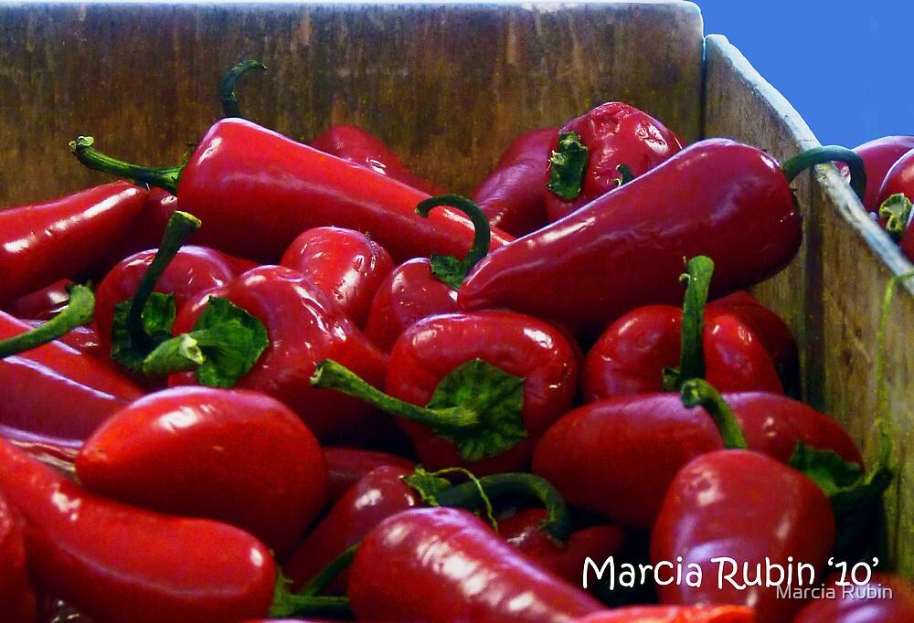 Red Hot! by Marcia Rubin