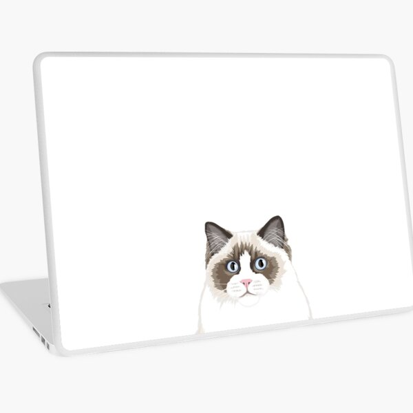 Seal Bicolor Ragdoll Laptop Skin