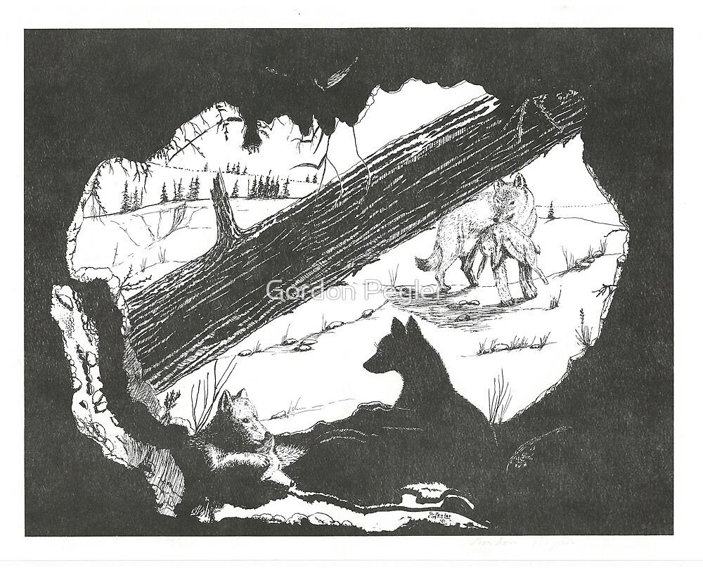 Coyote Den - Pen & Ink by Gordon Pegler