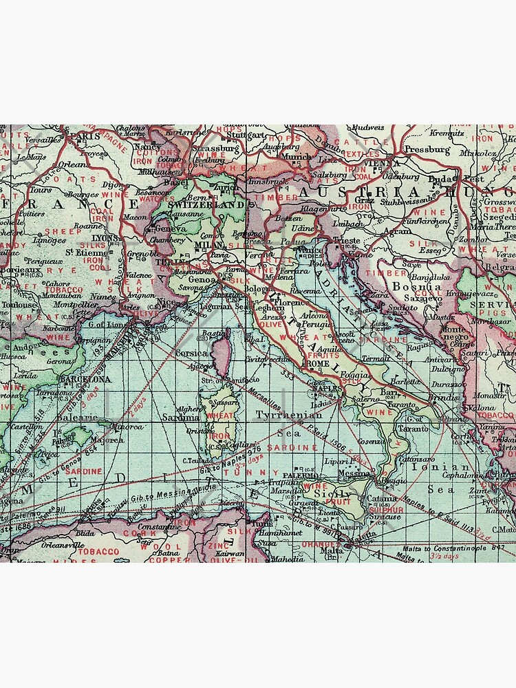 Vintage Italy Map by Lidra