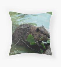 Beaver - Photography Throw Pillow