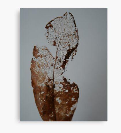A Fading Memory Canvas Print