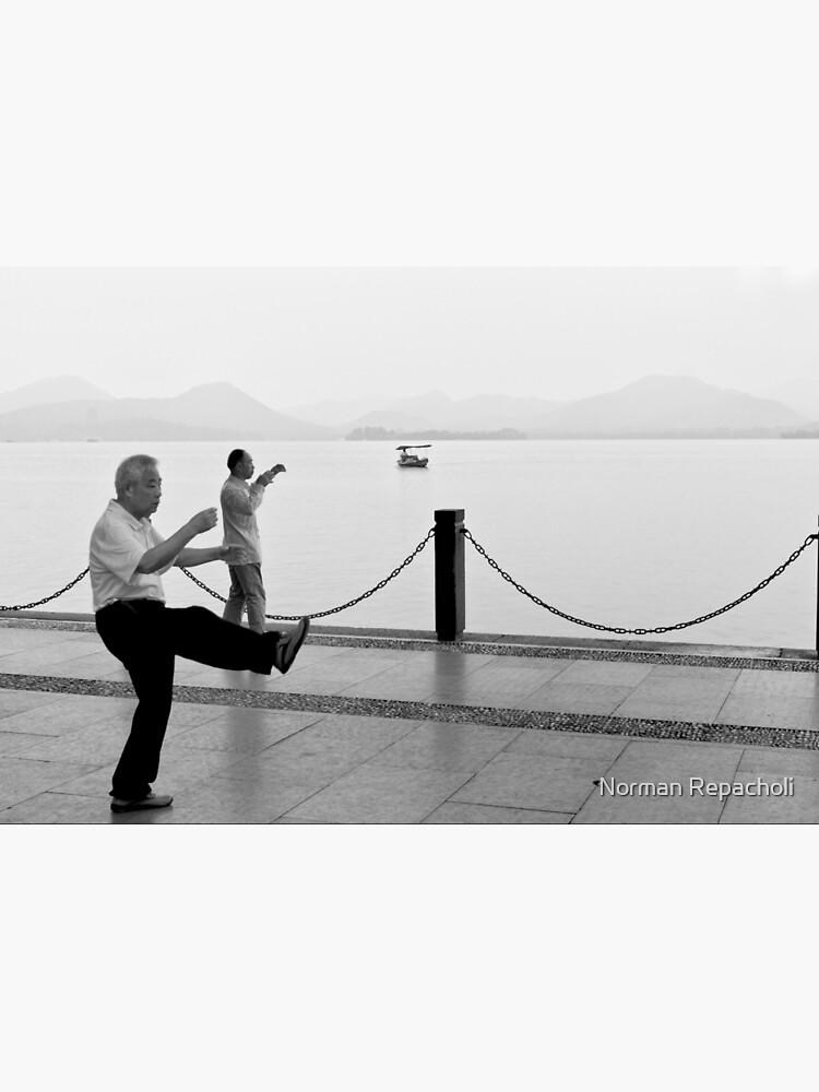 Tai Chi by the lake - Hangzhou, China by keystone