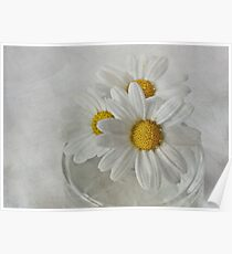 Daisies in a glass jar Poster