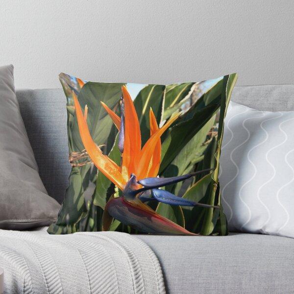Bird of Paradise (Strelitzia) from A Gardener's Notebook Throw Pillow