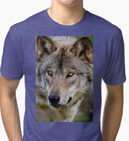 Timberwolf Portrait  Tri-blend T-Shirt