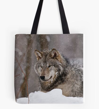 Timberwolf in Winter Tote Bag