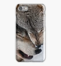 Special Moment iPhone Case/Skin