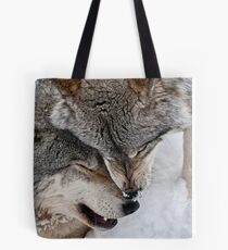 Special Moment Tote Bag