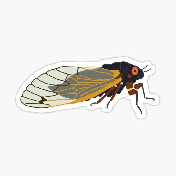 17 year periodical cicada Sticker
