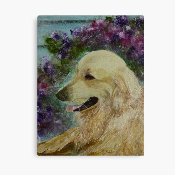 Beautiful Golden Retriever Canvas Print