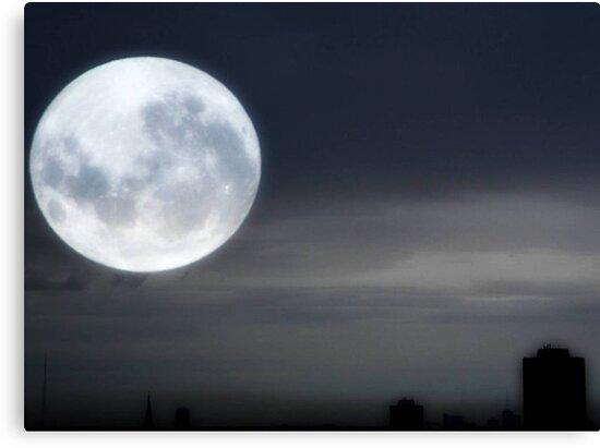 Silvery Moon ©  by Dawn Becker