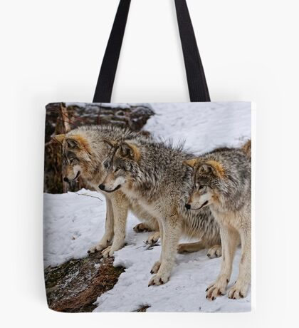 We three Kings.... Tote Bag