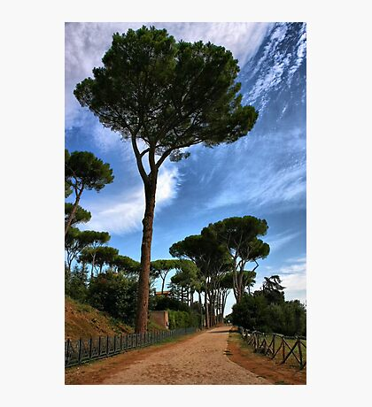 Road to Rome Photographic Print