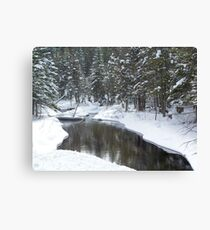 Jordan River Canvas Print