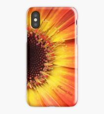 Orange Gerbera Daisy ~ Macro iPhone Case