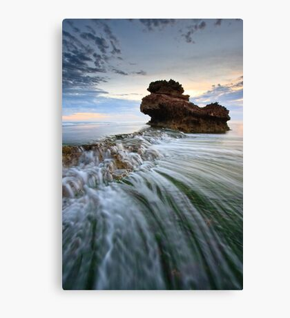 Thrills & Spills Canvas Print