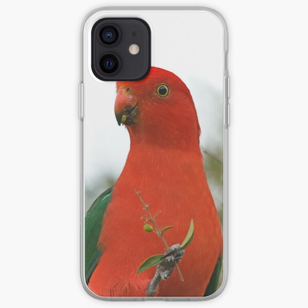King Parrot iPhone Soft Case