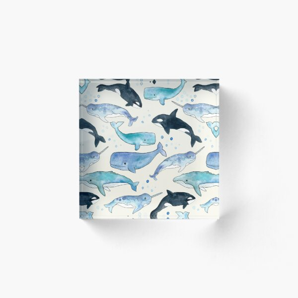 Whales, Orcas & Narwhals Acrylic Block