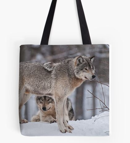Site Seeing Tote Bag