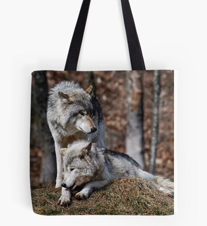 Alpha Pair Tote Bag
