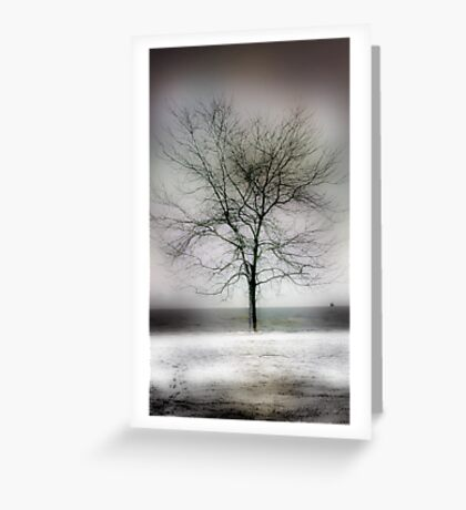 winter shore too Greeting Card