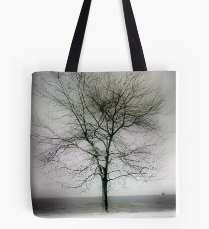 winter shore too Tote Bag