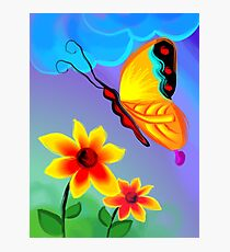 butterfly to taste the honey of the flowers Photographic Print