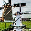 Mini-Me Zouteland Mill by George Parapadakis (monocotylidono)
