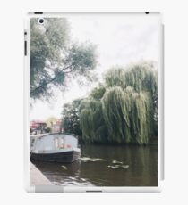 Water Willow iPad Case/Skin