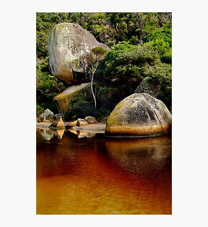 Tea Tree Stained Waters of Tidal River Photographic Print