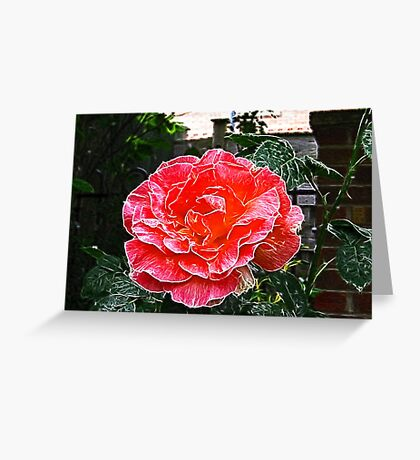 Rose's are Red, My Love.  Greeting Card