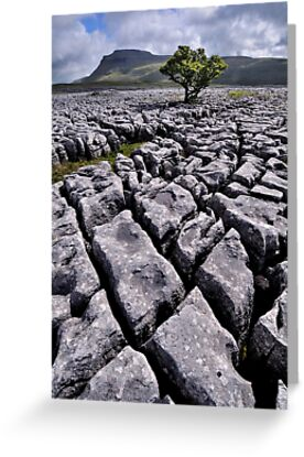 Ingleborough from White Scars by Dave Lawrance