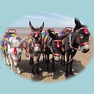 Donkey's  Memories by Dawnsuzanne