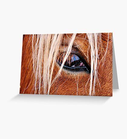 Eye Eye Greeting Card