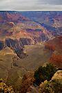 Grand Canyon National Park Birds Eye View by photosbyflood