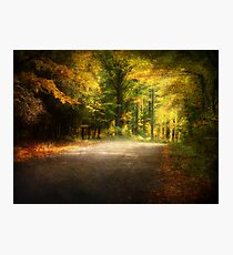 Autumn Lane • Door County Photographic Print