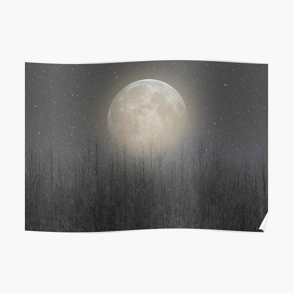 The Moon Shines Bright (Birch Moon II) Poster