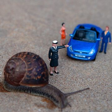 Stop: Snail Crossing by Sparks68