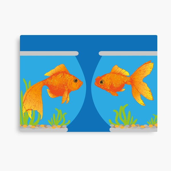 Two Little Goldfish in their Fish Bowls | Vintage Goldfish |  Canvas Print