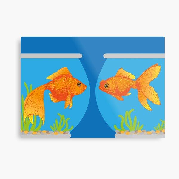 Two Little Goldfish in their Fish Bowls   Vintage Goldfish    Metal Print