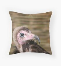 Hooded Vulture  Throw Pillow