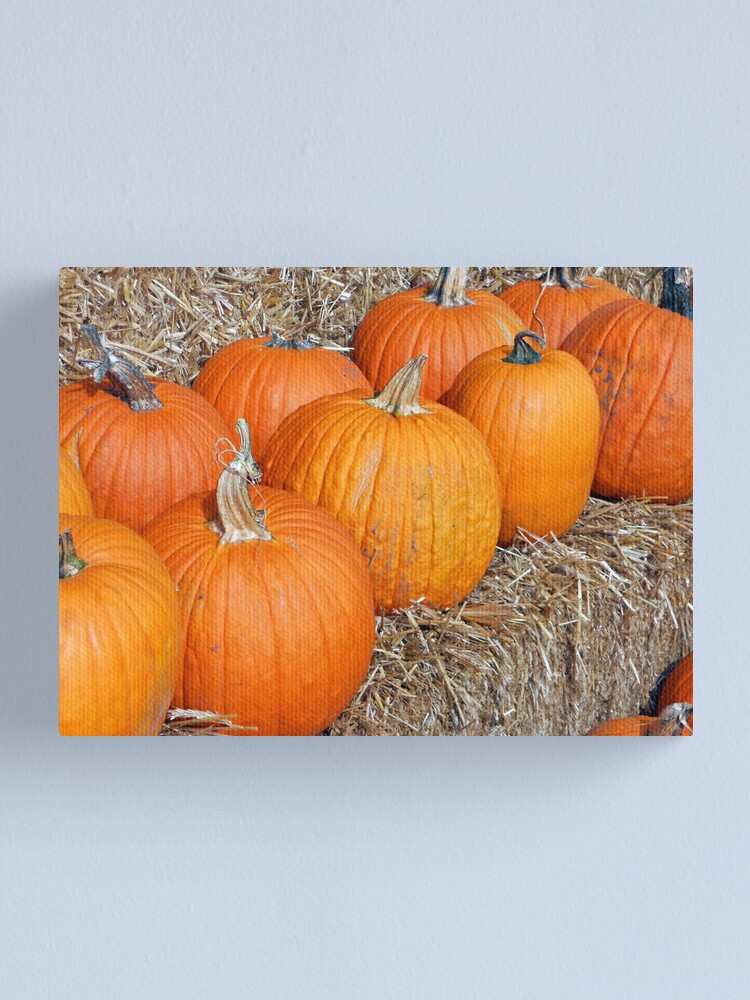 Alternate view of Pumpkin Parade Canvas Print