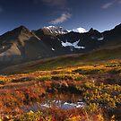 Auriol Autumn by Marty Samis