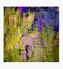 Reflections In a Pond #10b Photographic Print