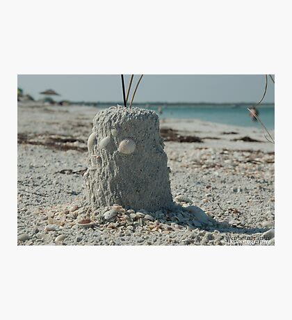 Castle in the Sand  Photographic Print
