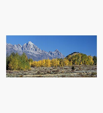 Fall Sweeping Through The Tetons (pan) Photographic Print